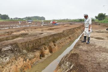 室町時代の遺物が多数出土した全長約70メートルにわたる堀跡=つくば市島名