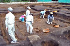 竪穴建物が3回建て替えられた後、平安時代に掘立柱建物が建てられたとみられる場所=常陸太田市瑞龍町