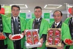 大きく実ったイチゴをPRするJA北つくばいちご部会の鷺谷一雄部会長(中央)=県庁