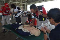臨時の救護所で実働訓練するDMAT=小美玉市の航空自衛隊百里基地