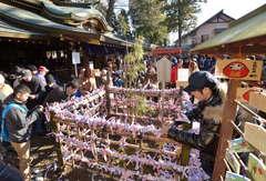 三岐の竹の囲いにおみくじを結ぶ参拝者ら=1日午前9時45分、常総市大塚戸町の一言主神社