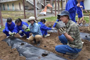 高萩市地域おこし協力隊の笹川雄也さんと美奈さんの指導を受けながらホオズキの定植作業に取り組むボランティア部の生徒たち=県立高萩清松高校