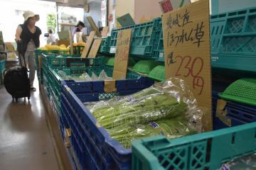猛暑の影響で価格が上昇しているホウレンソウなどの野菜=水戸市南町