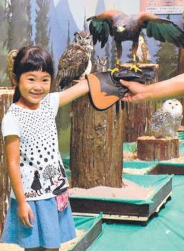 ハリスホークを腕に止まらせる児童=大洗町磯浜町のアクアワールド県大洗水族館