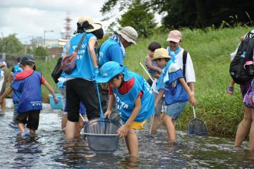 清掃活動などを通し、逆川の環境保全に努めた「トヨタソーシャルフェス」=水戸市千波町