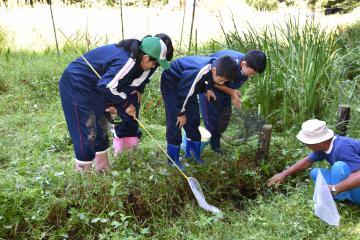 水生生物を捕まえようとする御前山中の生徒=常陸大宮市桧山