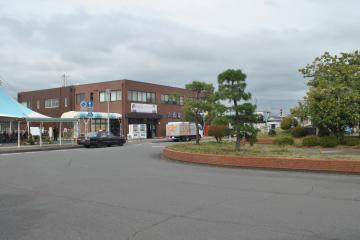 大洗町が改修に乗り出す大洗駅前広場。右側の緑地帯は撤去する=同町桜道