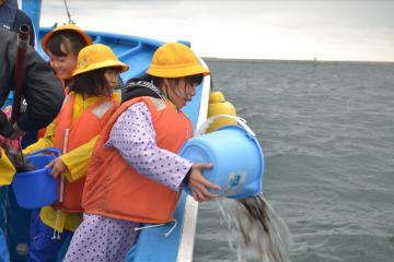 漁船からヒラメの稚魚を放流する磯崎小の児童=ひたちなか市の沖合