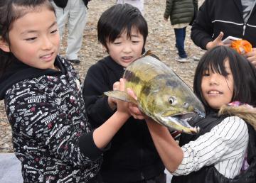 鬼怒川で捕獲されたサケを持ち上げる子どもたち=筑西市女方