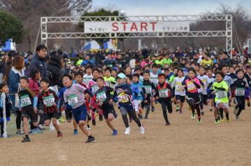 第14回ちくせいマラソン大会でスタートする参加選手ら(筑西市提供)
