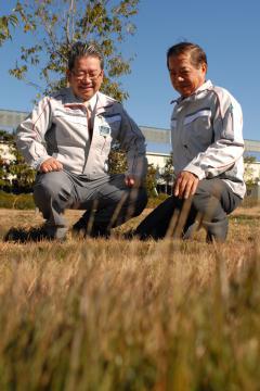 風船が見つかった場所を眺める坂元さん(右)と平原和洋さん=龍ケ崎市板橋町