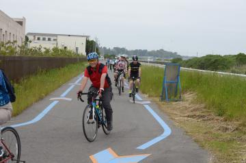 霞ケ浦、浜名湖、琵琶湖の3湖連携イベントでサイクリングを楽しむ参加者。自転車道の青い矢印に沿って走行=2018年5月18日、土浦市内