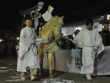 白馬祭でハンカチなどを踏みながら境内を回る神馬=7日午後6時35分ごろ、鹿嶋市宮中