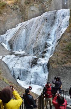 約8割が凍結し、厳寒の装いとなった袋田の滝=11日午前11時半ごろ、大子町袋田、菊地克仁撮影