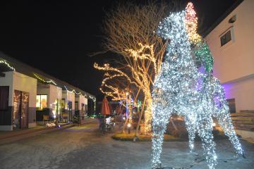 馬に乗る平将門をかたどったイルミネーションが飾り付けられた「秀緑」の敷地内=坂東市岩井