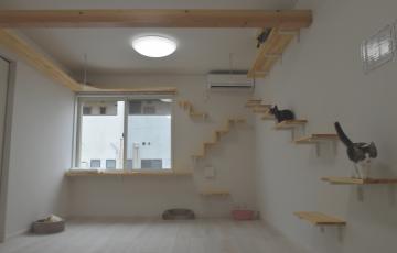 さまざまな工夫が施された猫共生型賃貸住宅「にゃんとハウス」=神栖市神栖