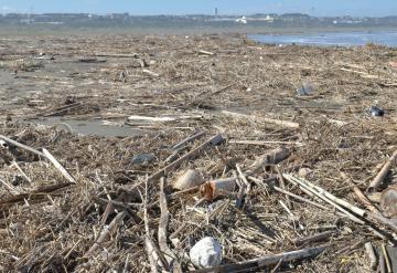 砂浜を埋め尽くしている大量の漂着ごみ=23日午後、鹿嶋市平井