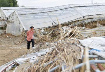 ビニールハウスが壊滅した皆川晃さん。再建を諦め、農業を辞めた。ハウスは当時のままになっている=7日午後1時45分ごろ、常陸大宮市野口、鹿嶋栄寿撮影