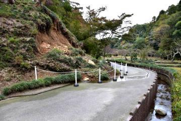 斜面が大きく崩れた西山御殿の敷地入り口付近=常陸太田市新宿町