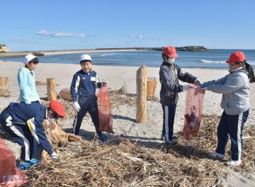 海岸に漂着したごみを拾い集める高萩市立東小学校の児童=同市有明町