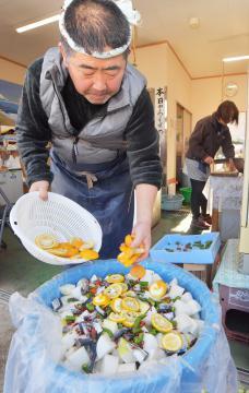 サンマや大根を塩漬けにした「ごさい漬け」の仕込み作業が進む=14日、鉾田市鳥栖、菊地克仁撮影
