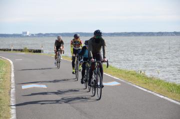 霞ケ浦湖畔を走るサイクリストたち。路面には青色の矢羽根表示が記され、自転車道を案内する