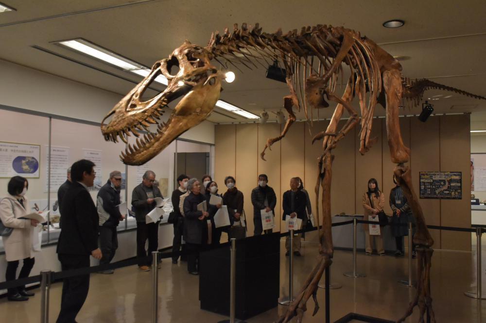 水戸市立博物館ボランティア向けに行われた特別展の内覧会=水戸市大町