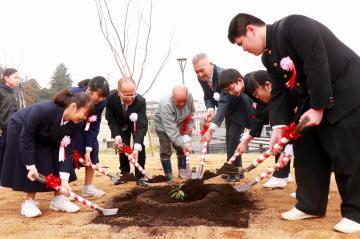 平和の樹を植樹する平和大使の中学生ら=石岡市役所