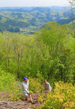 地域住民らが整備の手を入れる小舟富士。山頂からは新緑の山々や山間の集落が見渡せる=常陸大宮市小舟