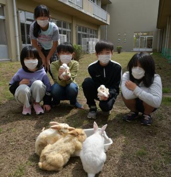 子ウサギを抱っこする飼育委員会の児童ら=潮来市立牛堀小