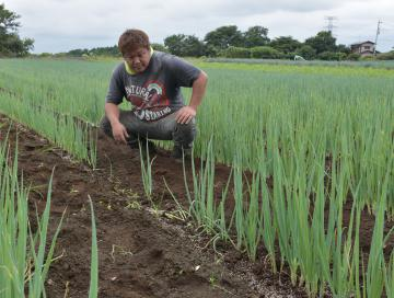 病気が発生して生育が止まり、一部に隙間が空いているネギ畑を見つめる竹前豊さん=つくば市九万坪