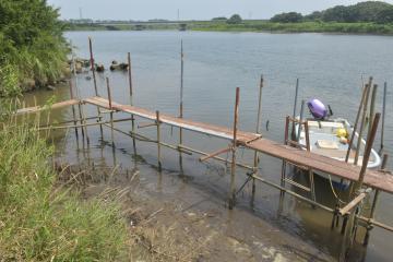 女性の遺体が見つかった鳴戸川と那珂川の合流地点周辺=ひたちなか市枝川