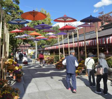 神社参道入り口で観光客を迎える傘の空中展示=笠間市笠間