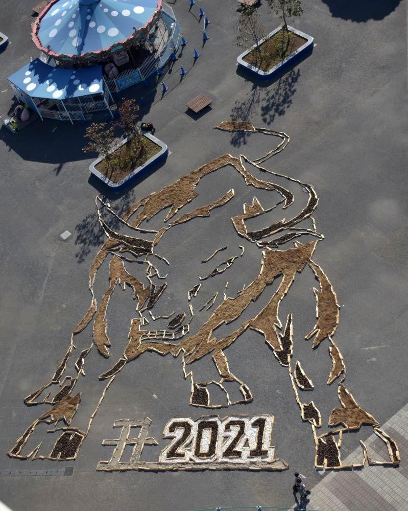 大観覧車から全容を見ることができる丑の巨大地上絵=ひたちなか市阿字ケ浦町