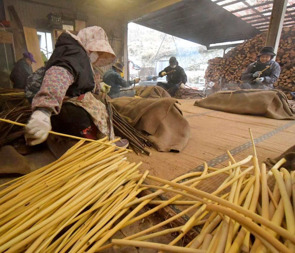 蒸したコウゾの皮を一つ一つ手でむく生産農家=13日午前7時12分、大子町大沢、鹿嶋栄寿撮影