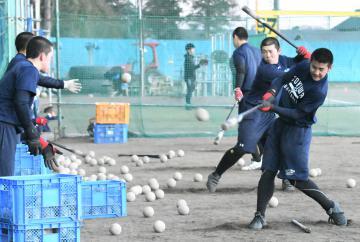 練習でトス打撃に取り組む常磐大高野球部=水戸市小吹町