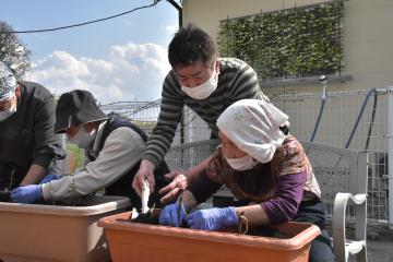ビール醸造する塚越さんがホップ苗寄贈 八千代の介護事業所にの画像