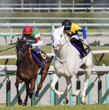 取手出身・吉田騎手 競馬牝馬クラシック、ソダシで2冠目指す 白毛馬と奮闘中の画像